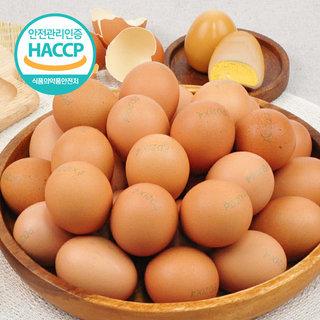 [HACCP]무항생제인증 계란으로 구운 쫀득한계란60개_BASIC / 1