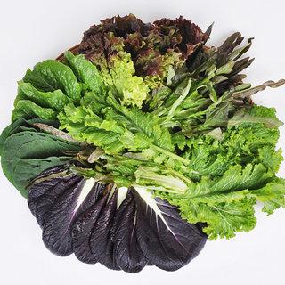 당일수확발송 유기농 모듬 쌈채소(야채) 옵션 선택_02번 쌈채소(야채) 800g