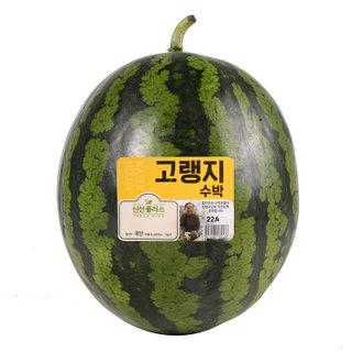 고랭지 일모작 수박_8-9kg(통)